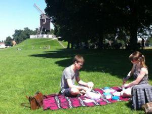 picnic molen1