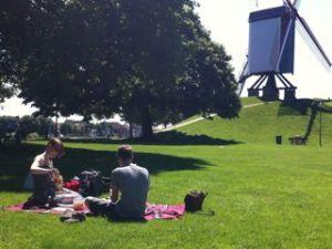 picnic molen2