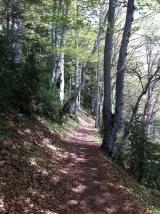 Two walks in Valle deTena