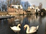 Walk in Bruges – Your guide inBruges